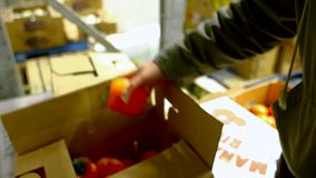 Mãos que mostram o vegetal e o fruto e que explicam o desperdício de alimento vídeos de arquivo