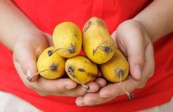 Mãos que mostram uma banana Foto de Stock Royalty Free