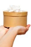 Mãos que prendem a caixa com fita branca Foto de Stock Royalty Free