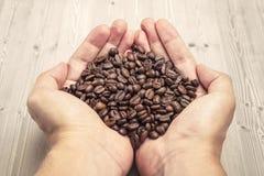 Mãos que prendem feijões de café Imagens de Stock