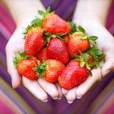 Mãos que prendem morangos Foto de Stock Royalty Free