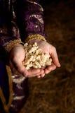 Mãos que prendem o Frankincense Imagens de Stock Royalty Free