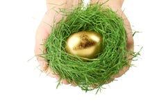 Mãos que prendem o ninho da grama com ovo do ouro foto de stock royalty free