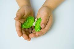 Mãos que prendem uma borboleta Fotografia de Stock