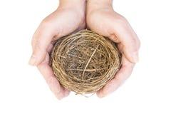Mãos que protegem o ninho de um pássaro vazio Imagens de Stock