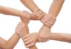 Mãos unidas isoladas no fundo branco Fotos de Stock Royalty Free
