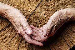 Mãos velhas e árvore velha Fotos de Stock Royalty Free