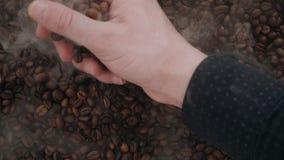 Męscy ręki z pewnością świntuchy w dużej garści aromatycznych kawowych fasolach od stosów kłama w dymu zdjęcie wideo