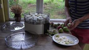 Mädchen übergibt Schale und Schneidenbirnen auf Tabelle nahe Lebensmitteltrocknermaschine 4K stock footage