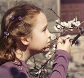 Mädchen atmet Geruch des Frühlingsblütenbaums lizenzfreies stockbild