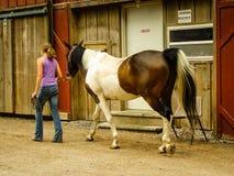 Mädchen auf Bauernhof gehend ein Pferd hinter einer Scheune Lizenzfreies Stockfoto