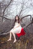 Mädchen auf dem Baum Stockbild