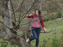 Mädchen auf dem Baum Stockfoto