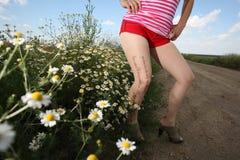 Mädchen auf dem Gebiet lizenzfreies stockfoto