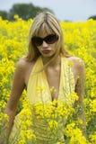 Mädchen auf dem gelben Gebiet Stockbilder