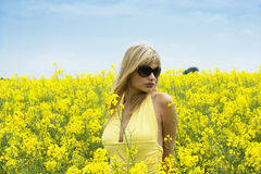 Mädchen auf dem gelben Gebiet Stockfotos