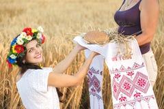 Mädchen auf dem Weizengebiet Lizenzfreie Stockbilder