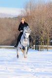 Mädchen auf Dressagepferd im Winter Lizenzfreies Stockfoto