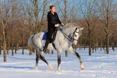 Mädchen auf Dressagepferd im Winter Stockfotos