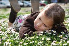 Mädchen auf einem Gebiet der Gänseblümchen Stockbilder