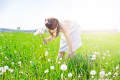 Mädchen auf Feld mit Löwenzahn Lizenzfreies Stockfoto