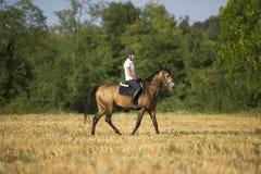 Mädchen auf Pferd Lizenzfreie Stockfotos