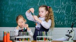 M?dchen auf Schulchemielektion Schultrainingspartner Kinder besch?ftigt mit Experiment Chemische Analyse und Beobachten stockfotografie