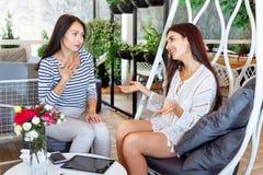 Mädchen besprechen Frauenfreundgesprächsplatz-Lebensstilsblätter der jungen Freundin des Geschäftscaféporträts zwei erfolgreiche  stockbilder