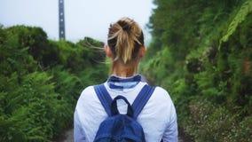 Mädchen betrachtet die Straße in einem nebelhaften Sommerwald in den Bergen stock video footage