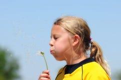 Mädchen brennt Löwenzahn-Startwerte für Zufallsgenerator durch stockfoto