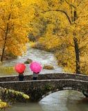 Mädchen, bunte Regenschirme in aughtum Park Lizenzfreie Stockfotos