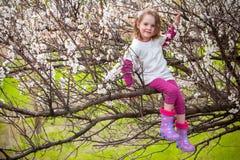 Mädchen, das auf Baum in der Blüte sitzt Stockbilder