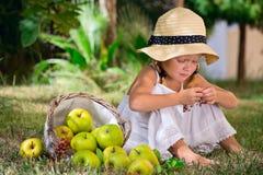 Mädchen, das auf dem Gras mit einem Korb der Äpfel sitzt stockbilder