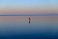 Mädchen, das auf den gefrorenen See eisläuft Lizenzfreies Stockfoto