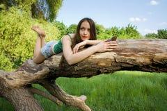 Mädchen, das auf einem Baum liegt Stockbild