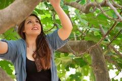 Mädchen, das auf einem Feigenbaum klettert Stockbild