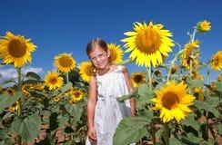 Mädchen, das auf einem Gebiet der Sonnenblumen steht Lizenzfreies Stockfoto