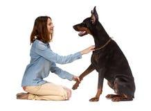 Mädchen, das auf ihren Knien vor einem großen schwarzen Hund sitzt Stockbild