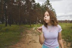 Mädchen, das auf weißem Löwenzahn im Wald durchbrennt stockfoto