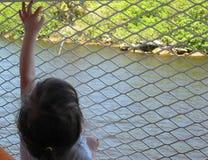 Mädchen, das auf Zaun erreicht Lizenzfreies Stockfoto