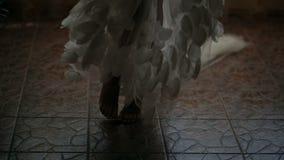 Mädchen, das barfuß in einem schönen peignoir aspinning ist stock footage