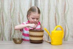 Mädchen, das bei Tisch Samen in einem Topf pflanzt Stockfotografie