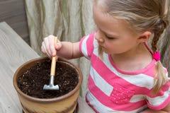 Mädchen, das bei Tisch Samen in einem Topf pflanzt Lizenzfreie Stockfotografie