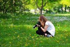 Mädchen, das Blumen in der Wiese fotografiert Stockfoto
