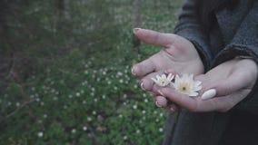 Mädchen, das Blumen in ihren Händen hält stock footage