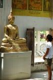 Mädchen, das den Buddha betrachtet Lizenzfreies Stockbild