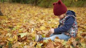 Mädchen, das in den gelben Blättern des Herbstes mit dem Telefon sitzt stock video