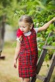 Mädchen, das die Äpfel zerreißt Stockfotografie