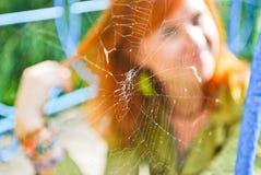 Mädchen, das durch das Web schaut stockfoto