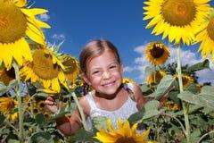 Mädchen, das durch Sonnenblumen schaut Lizenzfreie Stockfotografie
